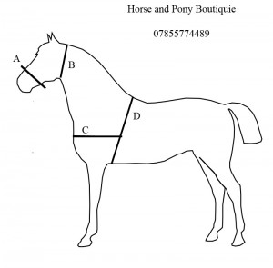 Simple_Horsecopy